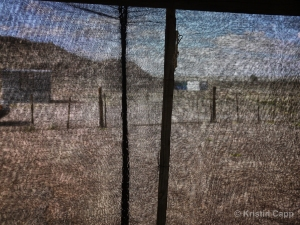 Screen Porch, 2014 by Kristin Capp